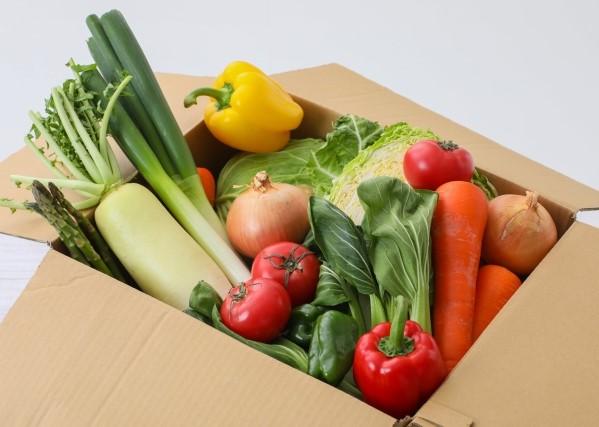 段ボールに入ったダイコン、ニンジン、ネギなどの野菜