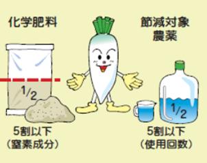 特別栽培農産物の化学肥料と農薬の節減割合の図。化学肥料は窒素成分が5割以下。農薬は使用回数が5割以下。