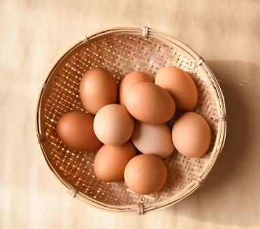 ざるに入った卵