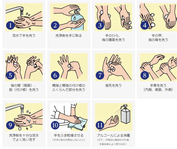 手洗い順序