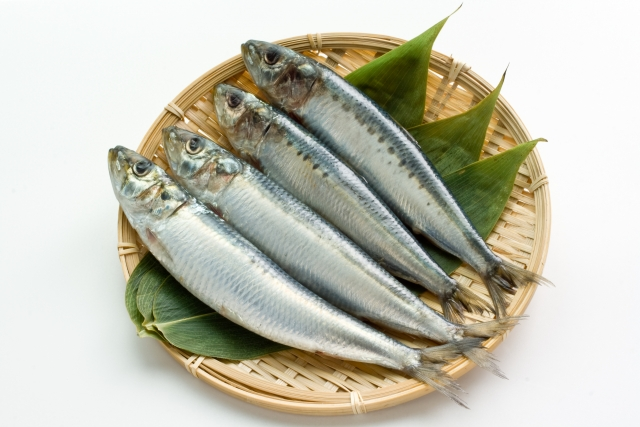 EPA、DPAが多く含まれる代表的な魚:イワシ